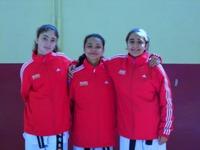 Okullar Arası Yıldızlar Taekwondo Şampiyonası