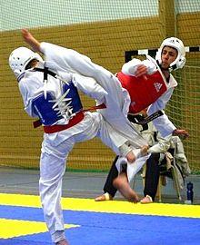 Taekwondo  nedir ?